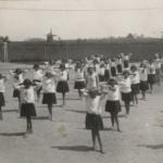 43-1930